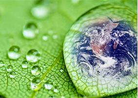 Ações contra o desperdício de água